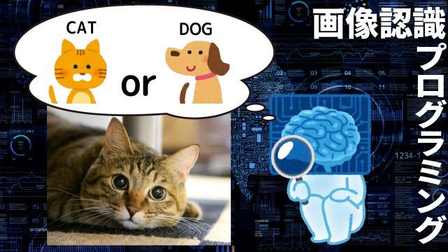 画像認識プログラミング