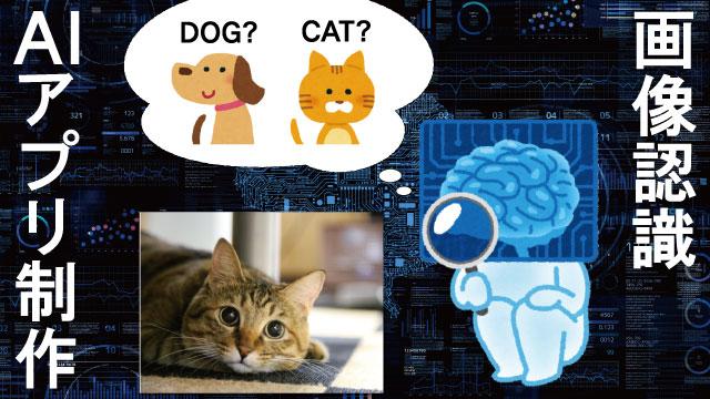 画像認識AIアプリ制作